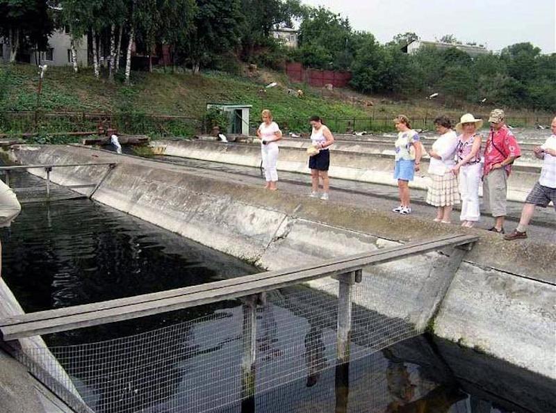 рыбная ловля в пятигорске